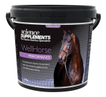 WellHorse Performance
