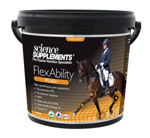 FlexAbility Plus - Horse Joint Supplements