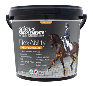 FlexAbility PROFESSIONAL - Horse Joint Supplement